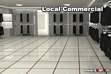 renovation du local commercial